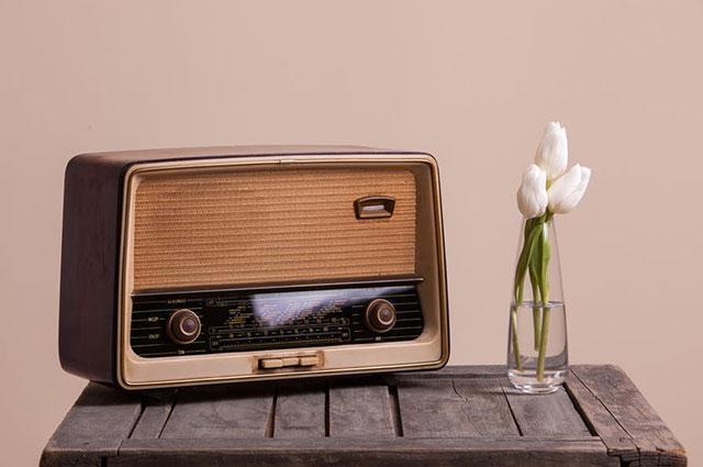 'MESIS' FM Radio 2.O &Public Address System